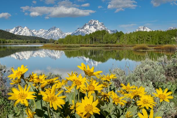 21 - Springtime in the Rockies