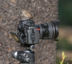 1-camera_